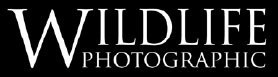 Wildlife Photographic Logo
