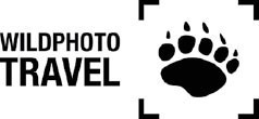 Wildphoto Travel Logo