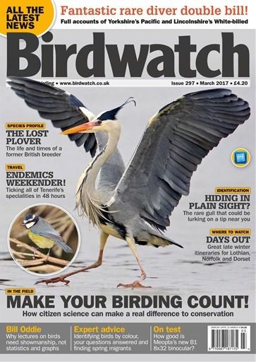 Birdwatch Image